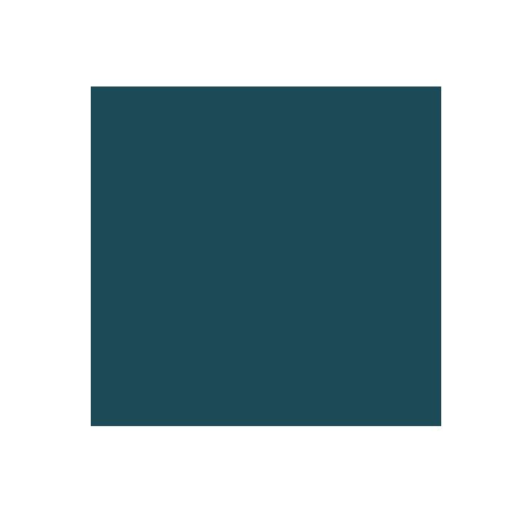 Michael-Buble-tribute-night-3
